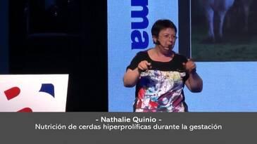 Nutrición de cerdas hiperprolíficas en gestación