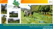 Sistemas Silvopastoriles para bovinos de leche en el Trópico Alto