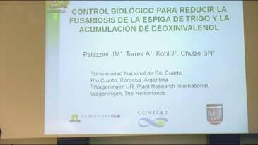 Fusariosis de la espiga de trigo: Juan Manuel Palazzini