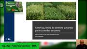 Avena: genética, fecha de siembra y manejo