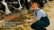 Consideraciones prácticas y sus efectos cuando alimentamos con Aminoácidos a las vacas lecheras, Phil Cardoso