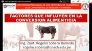 Buena conversión alimenticia en cerdos, Factores que influyen