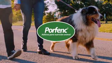 Porfenox Natural - Presentacion 2021