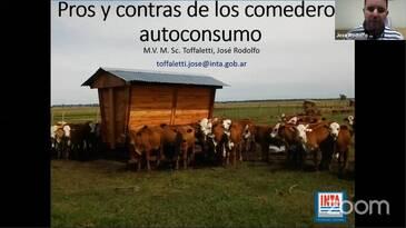 Comederos Autoconsumo: Pros y Contras