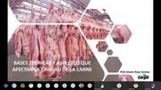 Bases teóricas y aspectos que afectan la calidad de la carne de cerdo
