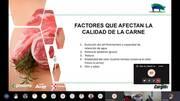Factores que afectan la calidad de la carne de cerdo