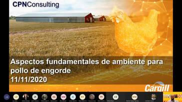 Aspectos fundamentales de ambiente para pollo de engorde