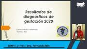 Uruguay - Diagnóstico de gestación 2020 Treinta y tres