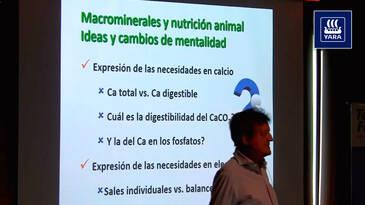 Balance Electrolítico, fundamental en nutrición animal