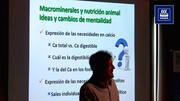 Impacto del calcio en la nutrición del fósforo