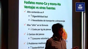 Digestibilidad de los fosfatos monocálcico y monosódico vs. otras fuentes
