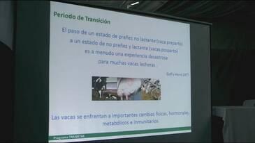 Juan Baeck: Nutrición preparto para alta producción
