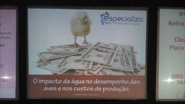 O impacto da água no desempenho das aves e nos custos da produção.