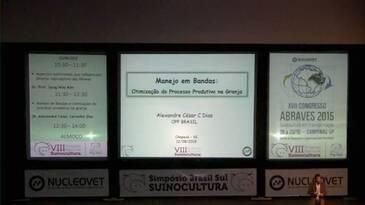Manejo de Bandas e Otimização do Processo na Granja.