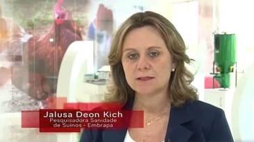 Vídeo Embrapa: Limpeza, desinfecção e vazio sanitário em granjas de suínos.