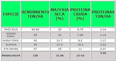 Proteinas por Forraje