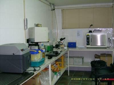 laboratório inseminação artificial para coelhos