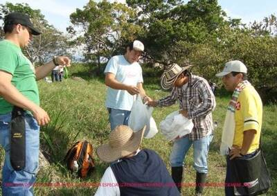 Practica de Pastos y Forrajes Tropicales