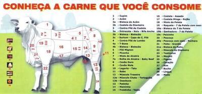 Partes da carcaça e suas carnes