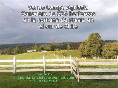 Vendo campo ganadero de 324 hectáreas sur de Chile