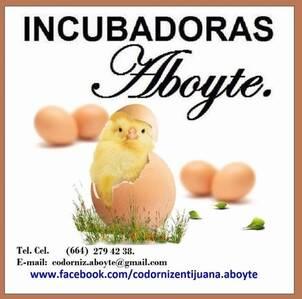 Incubadoras Aboyte.