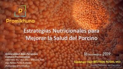 Ponencia: Estrategias Nutricionales