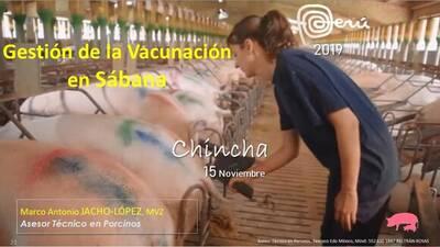 Vacunación en sabana