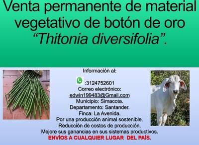 producción animal sostenible