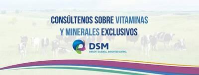 DSM animal nutricion CEL :438 112 41 37