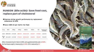 La mejor solución para ahorrar el costo de alimentación del cultivo de camarón.