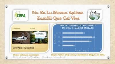 Experiencia uso Zumsil en Araucanía Chile