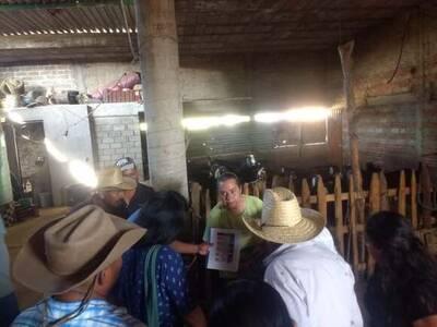 Práctica zootécnica con productores rurales