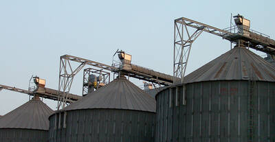 Colectores de polvo en Trasnportador de Cadena al silo
