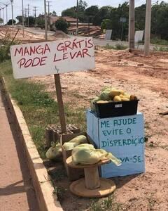 Mango gratis