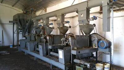 Extraccion de aceites de Algodon