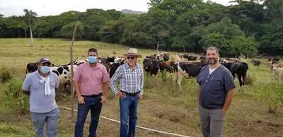 Pastoreo inteligente (PRV)