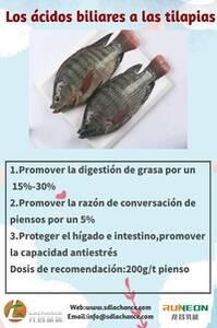 Los ácidos biliares mejoran la cría de tilapias