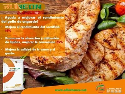 Runeon on beef