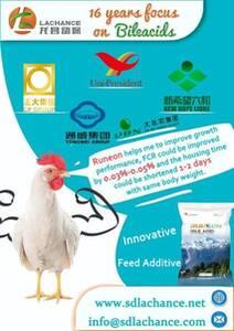 Innovador producto para mejorar el crecimiento de pollos de engorde