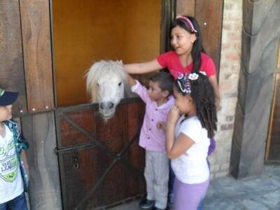 con el pony
