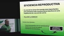 Programas de Sincronización e Inseminación Artificial en Rodeo de Carne. Ponencias Antonio Lucero y Alfonso Monge.