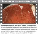 En Argentina, por mal trato a la hacienda, en el negocio: Se pierden 200 Mill de dólares al año