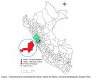 Producción y calidad forrajera de tres especies del género Pennisetum en el Valle Altoandino de Ancash