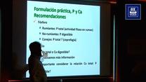 Calcio Total, Calcio Digestible y Relación Calcio-Fósforo