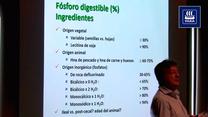 Fósforo digestible en ingredientes