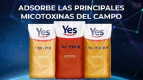 YES - FIX linea de adsorbente de micotoxinas para aves y cerdos