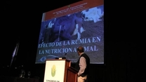 Efecto de la rumia en la nutrición animal. Gustavo Clemente