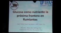 Glucosa como nutriente, la próxima frontera. Juan Pablo Russi