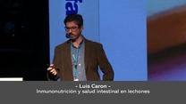 Inmunonutrición y salud intestinal en lechones