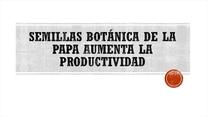 Semillas botánica de la Papa aumenta Productividad